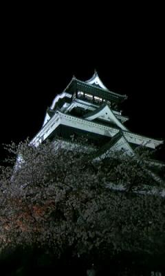 090326kumamo-yuka.JPG
